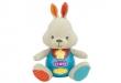 Conejo Canta y Aprende Conmigo (Inglés)